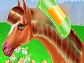 Pferdeliebe: Reiten und Fürsorge